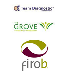 Team Diagnostic-Team Grove-Firob